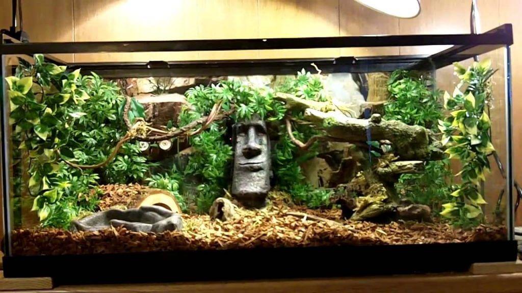 Как сделать аквариум для террариума 71